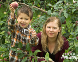 The Weekend Housewife - Apple Picking at Blackman Homestead Farms Lockport NY