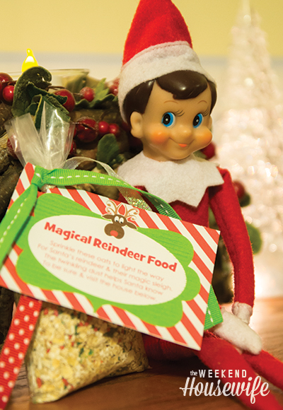 Elf on the Shelf Ideas for Busy Moms