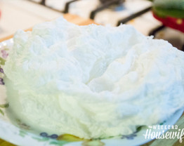 The Weekend Housewife - Science Project For Kids - Ivory Soap Experiment
