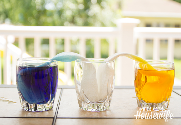 The Weekend Housewife - Science Project For Kids - Walking Water